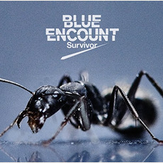 Survivor mp3 Single by BLUE ENCOUNT