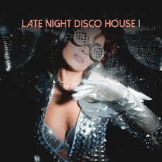 Late Night Disco House, Vol.1 by Various Artists