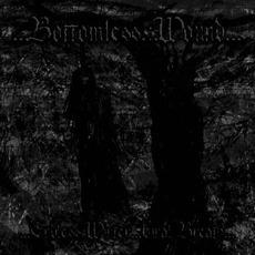 Endless Winter/Final Breath mp3 Single by Disnomia