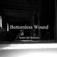 Senda del Solitario mp3 Single by Disnomia