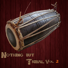 Nothing But Tribal, Vol. 2 by Various Artists