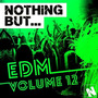 Nothing But... EDM, Vol.12