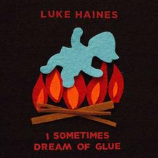 I Sometimes Dream of Glue by Luke Haines