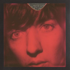 Tell Me How You Really Feel mp3 Album by Courtney Barnett