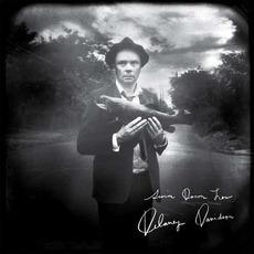 Swim Down Low mp3 Album by Delaney Davidson