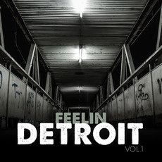Feelin Detroit, Vol.1 mp3 Compilation by Various Artists
