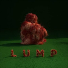 LUMP mp3 Album by Lump