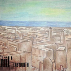 Labyrinth mp3 Album by Niil'