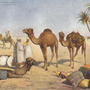 Arabische Nächte