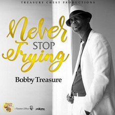 Never Stop Trying by Bobby Treasure