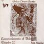 Commandments of Dub, Chapter 10: Africa Drum Beats