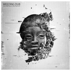 Another Night Another Day mp3 Album by Weeding Dub