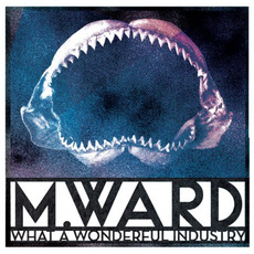 What a Wonderful Industry mp3 Album by M. Ward