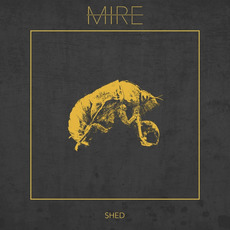 Shed by Mire (2)