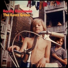 Hardly Electronic mp3 Album by The Essex Green