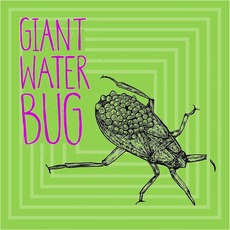 Giant Water Bug by Giant Water Bug