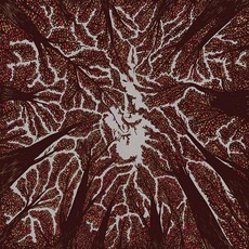 Crown Shyness by Trash Boat