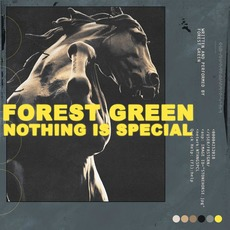 Nothing Is Special by Forest Green