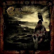 Nine Years Of Blood mp3 Album by Cruachan