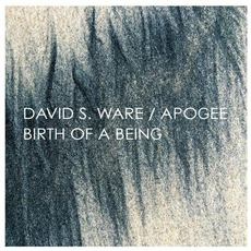 Birth Of A Being (Remastered) mp3 Album by David S. Ware