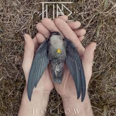 Hollow by Iliad