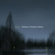 Wading In Shallow Waters by Gargle