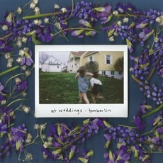 At Weddings mp3 Album by Tomberlin