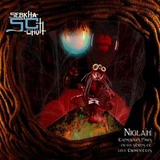 Nigla[H] - Tapisseries Fines En XXX Strips Et LXXX Trompettes by Sebkha-Chott