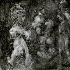 With Animals mp3 Album by Mark Lanegan & Duke Garwood