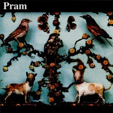 The Museum Of Imaginary Animals by Pram