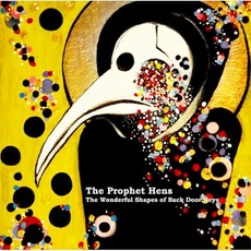 The Wonderful Shapes of Back Door Keys by The Prophet Hens