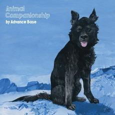 Animal Companionship by Advance Base