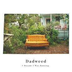 I Dreamt I Was Running by Dadweed