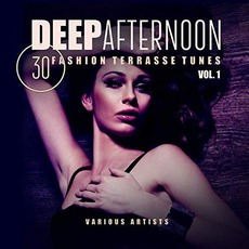Deep Afternoon, Vol.1 by Various Artists