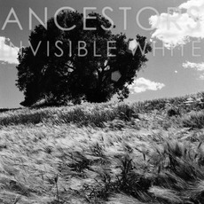 Invisible White mp3 Album by Ancestors