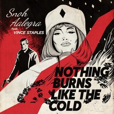 Nothing Burns Like the Cold by Snoh Aalegra