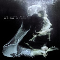 Breathe:See:Move by Siamese