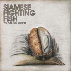 We Are The Sound by Siamese