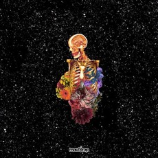 Visceral by Getter