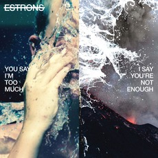 You Say I'm Too Much, I Say You're Not Enough mp3 Album by Estrons