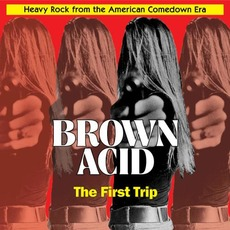 Brown Acid: The First Trip mp3 Compilation by Various Artists