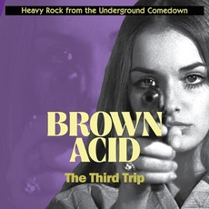Brown Acid: The Third Trip mp3 Compilation by Various Artists