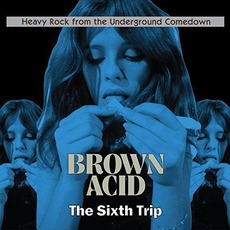 Brown Acid: The Sixth Trip mp3 Compilation by Various Artists