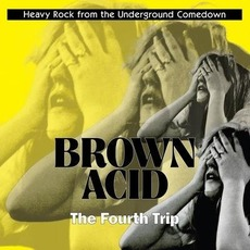 Brown Acid: The Fourth Trip mp3 Compilation by Various Artists