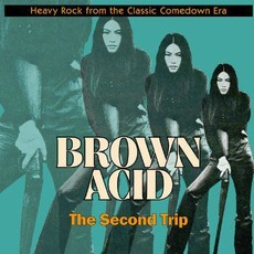 Brown Acid: The Second Trip mp3 Compilation by Various Artists