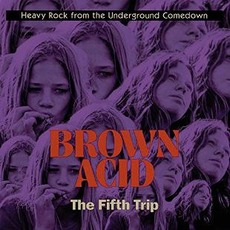 Brown Acid: The Fifth Trip mp3 Compilation by Various Artists