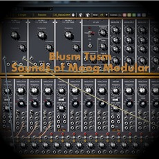Sounds Of Moog Modular by Blusm Tusm
