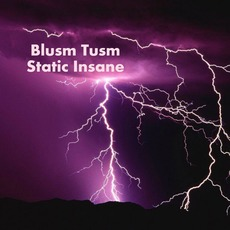 Static Insane by Blusm Tusm