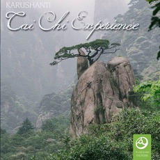 Tai Chi Experience mp3 Album by Karushanti