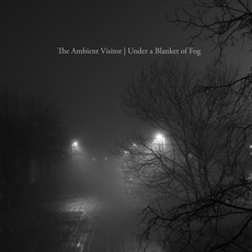 Under a Blanket of Fog mp3 Album by The Ambient Visitor